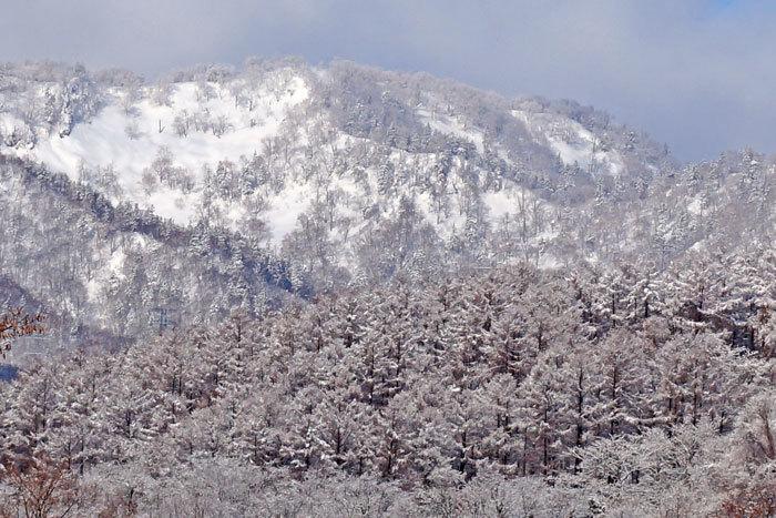 春の雪_d0162994_09275528.jpg