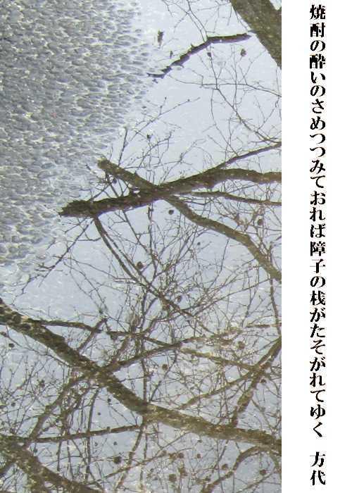 f0117041_05180316.jpg