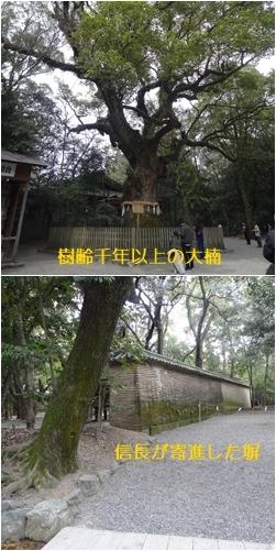 熱田神宮と名古屋城_a0084343_14431804.jpg