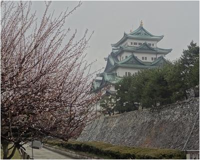 熱田神宮と名古屋城_a0084343_16092142.jpg