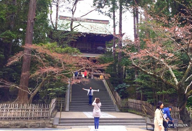 ☂ 雨の鎌倉散策 ☂ 円覚寺 其の壱_a0092659_18103920.jpg