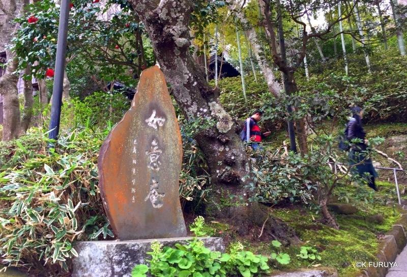 ☂ 雨の鎌倉散策 ☂ 円覚寺 其の壱_a0092659_22002418.jpg