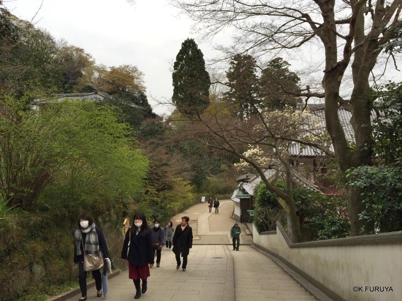 ☂ 雨の鎌倉散策 ☂ 円覚寺 其の壱_a0092659_22220520.jpg