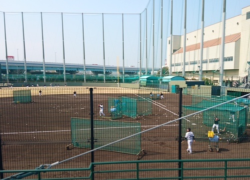 プロ野球ファーム公式戦_e0139459_17413455.jpg