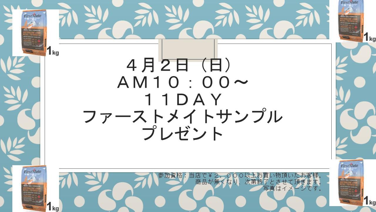 170401 11DAYイベント告知_e0181866_194622.jpg