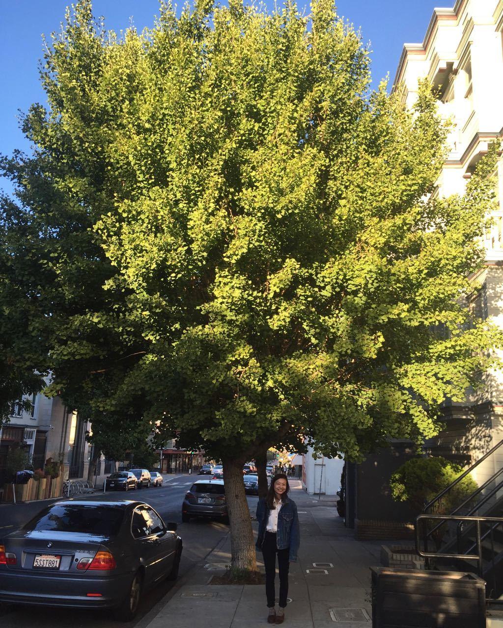 Under the big tree_f0170995_10163878.jpg