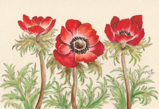 花の水彩画あれこれ。_b0089338_1955220.jpg