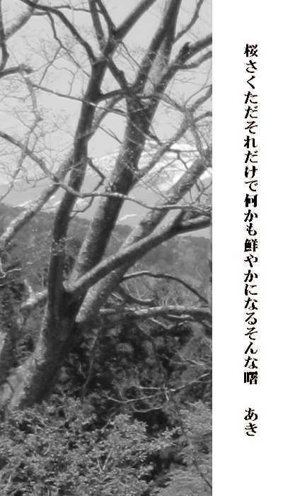 f0117041_15125410.jpg