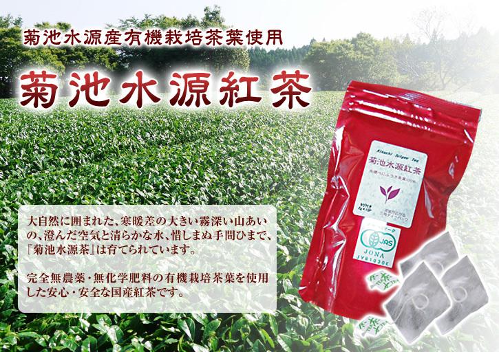 菊池水源茶 令和2年度の茶摘みの様子!こだわりの有機栽培のお茶の茶摘みを取材しました!_a0254656_19184927.jpg