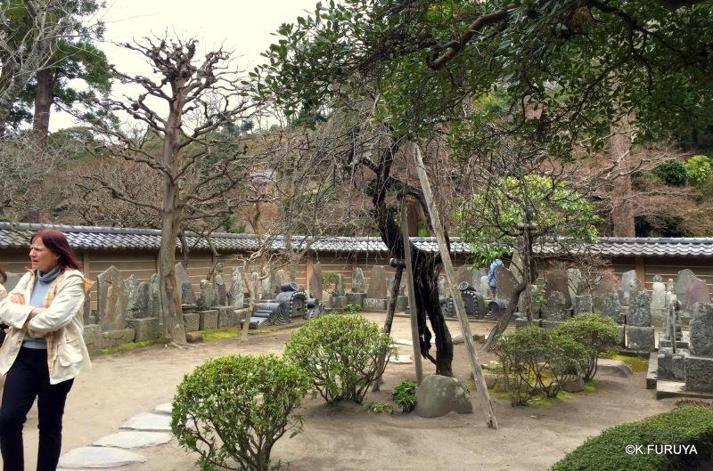 ☂ 雨の鎌倉散策 ☂ 円覚寺 其の弐_a0092659_01271725.jpg