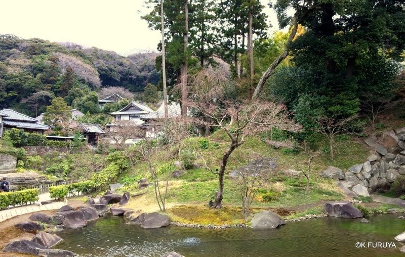☂ 雨の鎌倉散策 ☂ 円覚寺 其の弐_a0092659_01420491.jpg