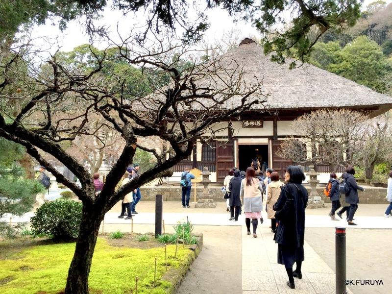 ☂ 雨の鎌倉散策 ☂ 円覚寺 其の弐_a0092659_15004188.jpg