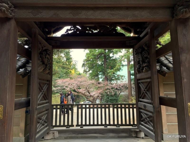☂ 雨の鎌倉散策 ☂ 円覚寺 其の弐_a0092659_16321346.jpg