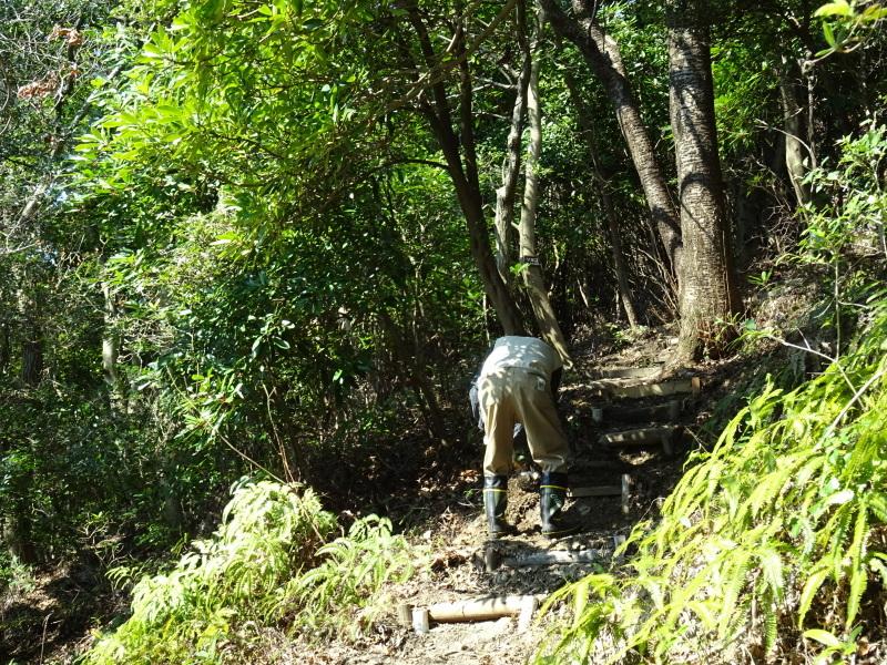 階段の補修も大変であった・・・うみべの森_c0108460_21452525.jpg