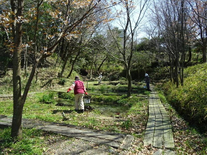階段の補修も大変であった・・・うみべの森_c0108460_21462711.jpg