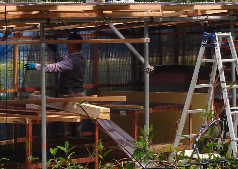階段の補修も大変であった・・・うみべの森_c0108460_21474402.jpg
