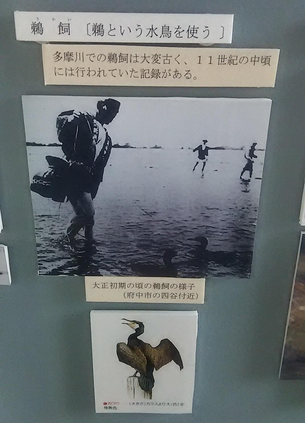 花見シーズン始まる_c0092197_19101359.jpg