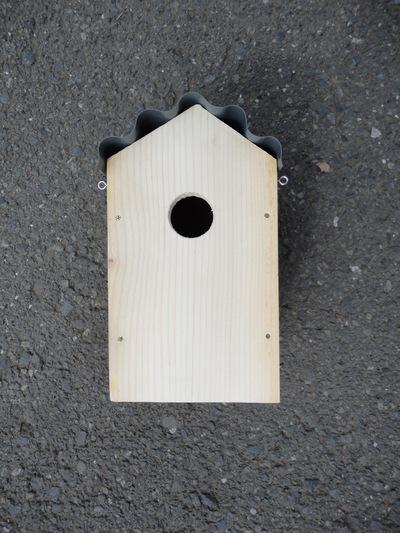 2017 鳥の巣箱、間に合うかな_a0122098_18261821.jpg