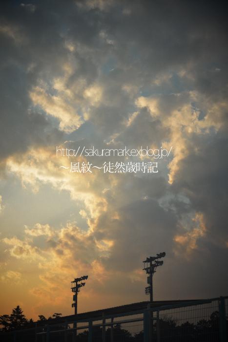 春の夕暮れ。_f0235723_20505941.jpg