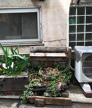 ガレリア青猫への道......_f0152544_21252071.jpg