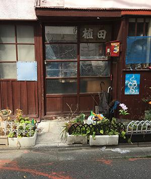 ガレリア青猫への道......_f0152544_21255884.jpg