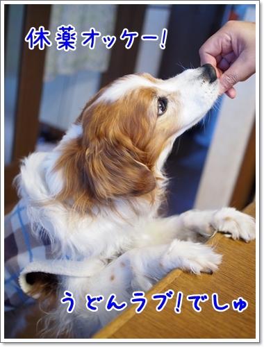 d0013149_00430973.jpg