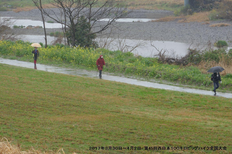 第45回西日本100キロビッグハイク全国大会 ー1_b0220064_21233229.jpg