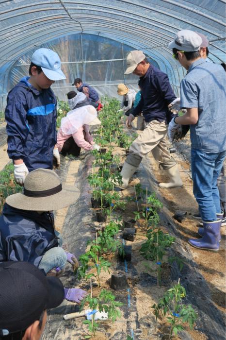 春の植え付けデー at Bliss  Farm Minou_c0116778_09142916.jpg
