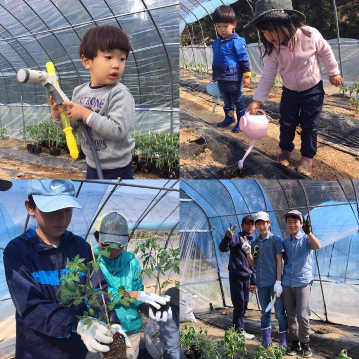 春の植え付けデー at Bliss  Farm Minou_c0116778_09143094.jpg