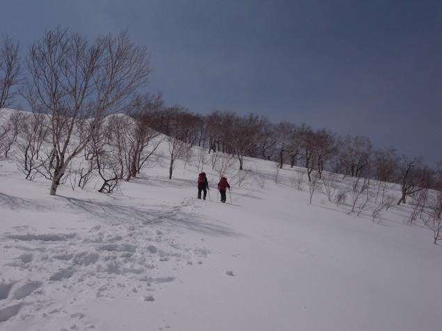 恵庭岳で驚きの出会い、2017.4.2_f0138096_08534921.jpg