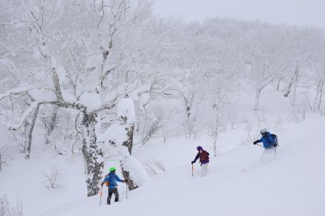 2017年1月21日朝里岳を滑る -1_c0242406_09154667.jpg