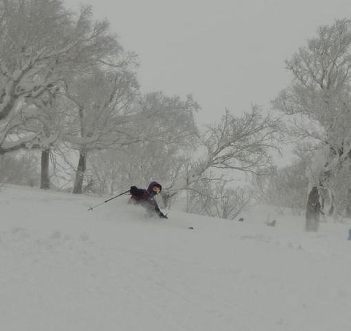 2017年1月21日朝里岳を滑る-2_c0242406_11504133.jpg