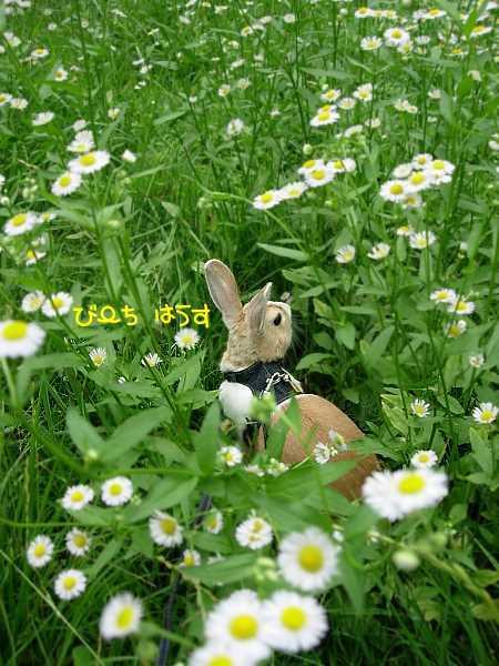 b0326613_01183989.jpg