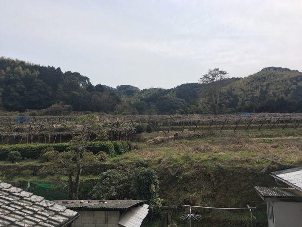 「キウイ畑を望むみかんhouse」の家づくりがスタートしました☆_e0029115_09474405.jpg