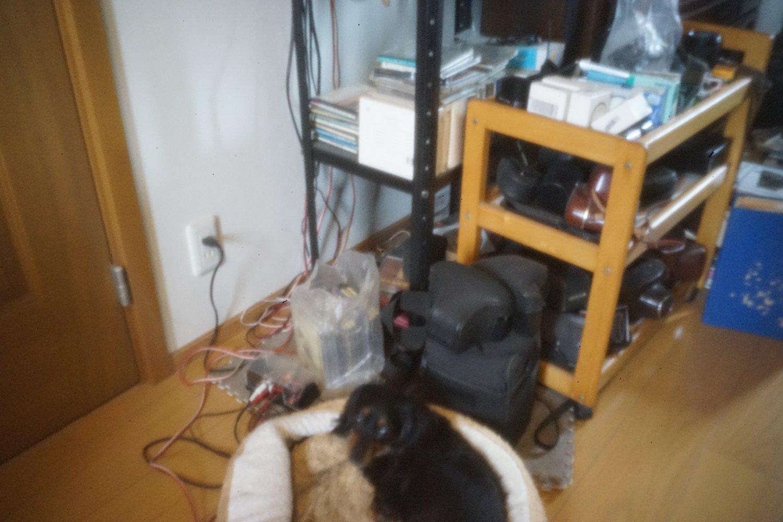 カメラ オブスキュラ_b0069128_957044.jpg