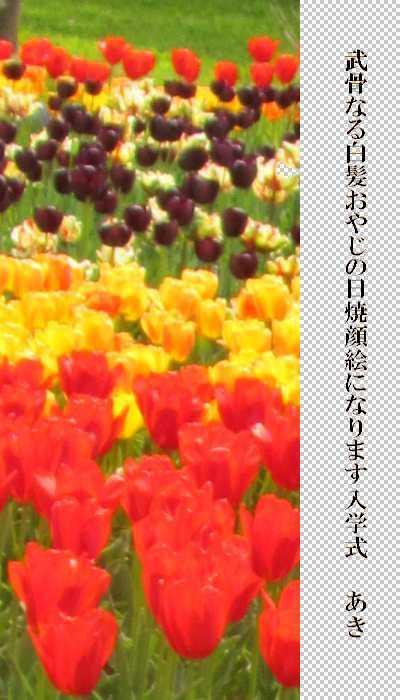 f0117041_06371860.jpg