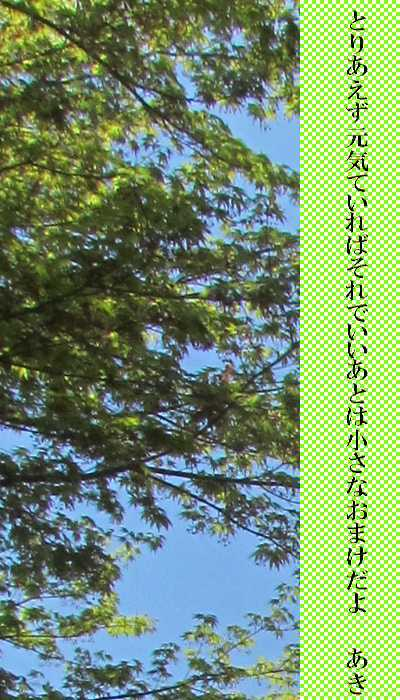f0117041_06523726.jpg