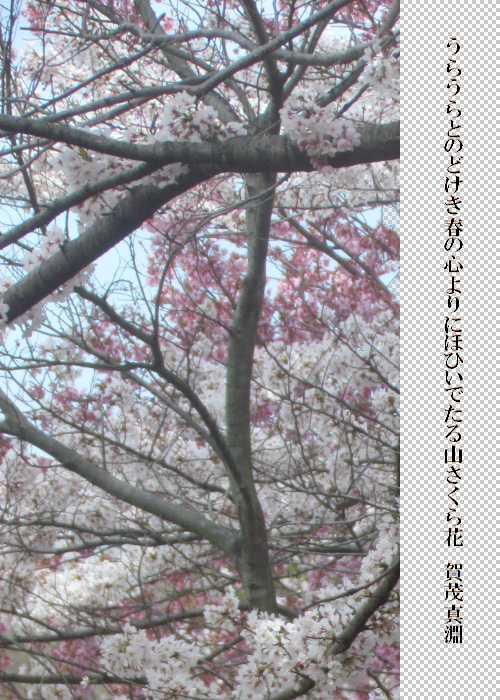 f0117041_20502166.jpg