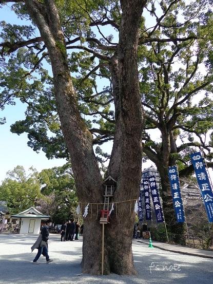 九州旅行 3/1 熊本城_d0356844_03203298.jpg