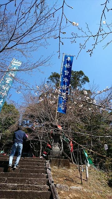 宮水神社と桜_e0173655_17123397.jpg