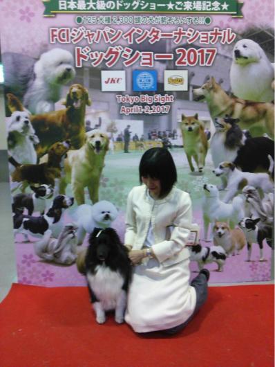 JKCジャパンインター2017_f0126965_21290451.jpg