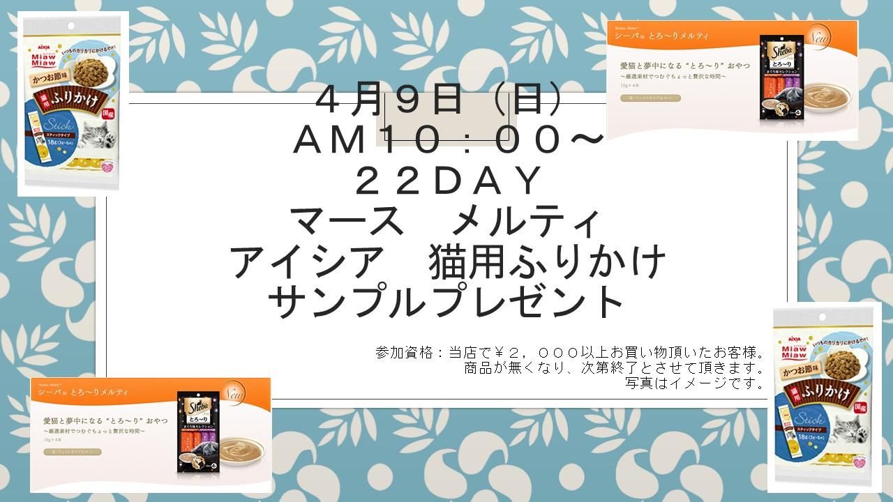 170404 22DAYイベント告知_e0181866_18535697.jpg