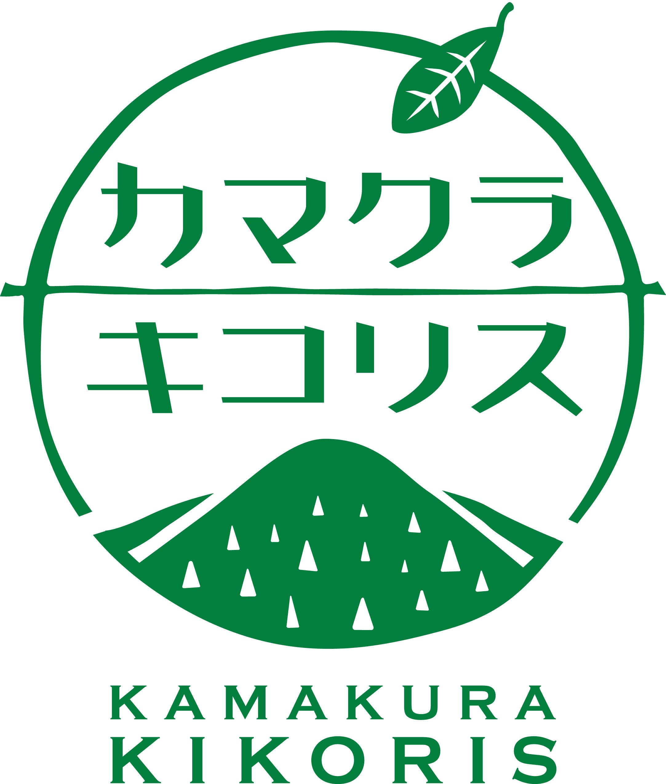 『カマクラキコリス』ワークショップを神奈川新聞が掲載_c0014967_06020591.jpg