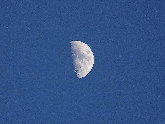 上弦の半月_e0016894_22190620.jpg
