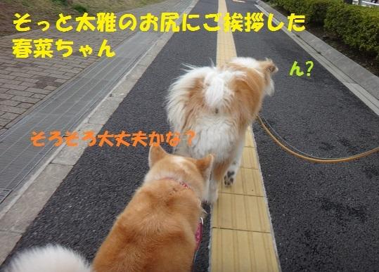 f0121712_14080550.jpg