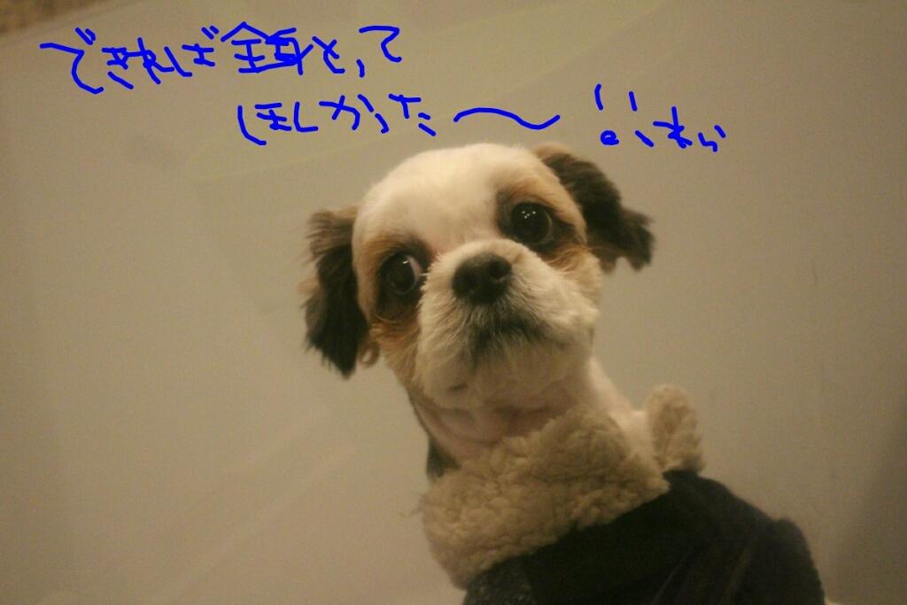 b0130018_20034638.jpg