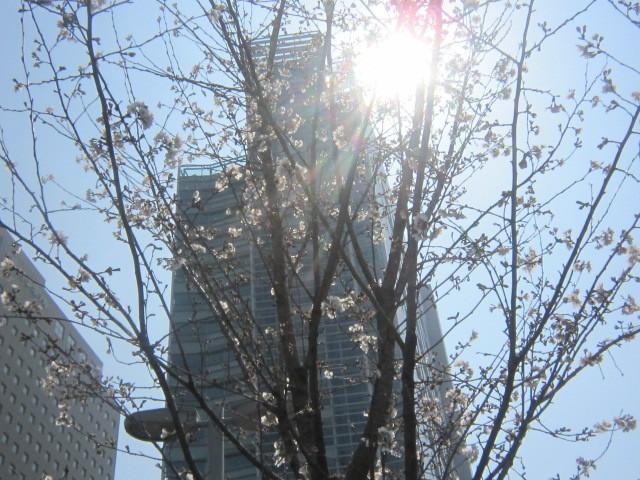 ♪春と共に★レオンジャックⅡ(初日)_d0162225_21372523.jpg