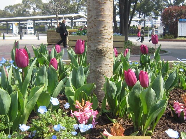 ♪春と共に★レオンジャックⅡ(初日)_d0162225_21375649.jpg
