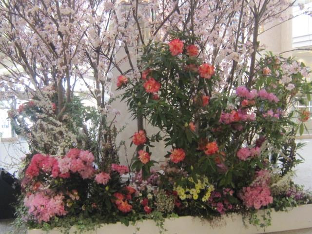 ♪春と共に★レオンジャックⅡ(初日)_d0162225_21385787.jpg