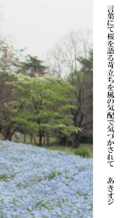 f0117041_06381763.jpg